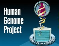 Progetto genoma umano, 950 MLD di $ di guadagni: quando la ricerca paga